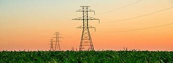 Cobelec™: Ag. Residue to Electricity